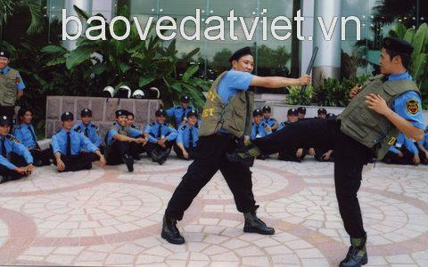 nhân viên công ty bảo vệ Đất Việt