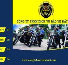 công ty bảo vệ Đất Việt